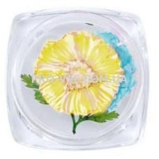 Сухоцветы для декора №34 ромашки желтые, голубые и листья фото | PRO-VSE
