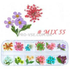 Сухоцветы для декора НАБОР №55 микс цветы и листья