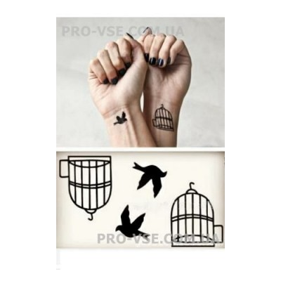 Flash tattoo HC-60 (6 х 10.5см)