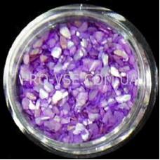 Ракушка Фиолетовый